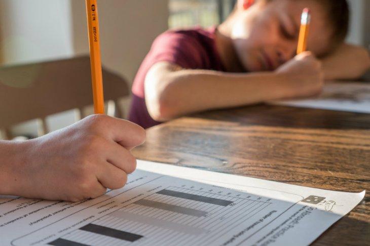Na czym polega edukacja domowa i czym się różni od edukacji zdalnej